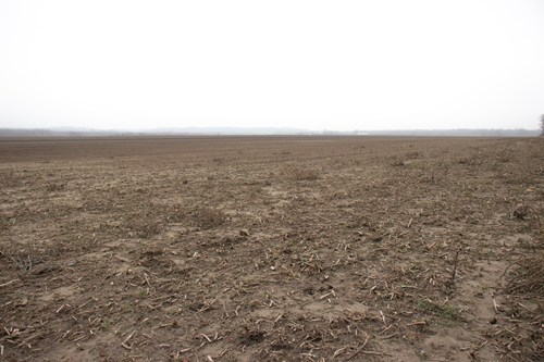 Alexander County Southern Illinois 238 Acre Farm For Sale