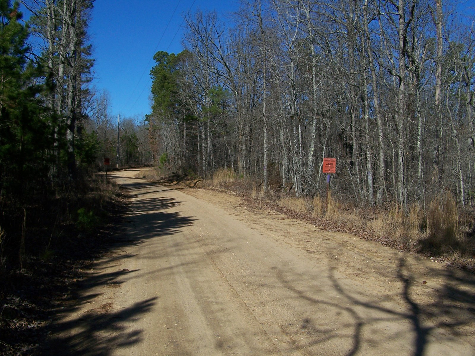 20 Acres Hunting Land For Sale in Arkansas Ozarks