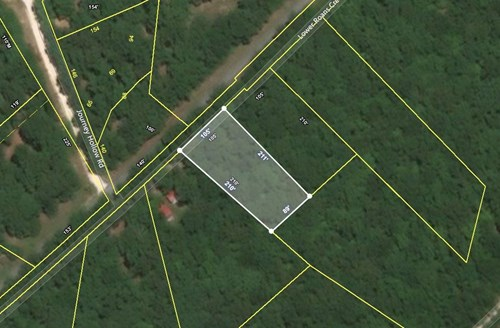 0.47 Acre Lot for Sale Near the TN River, Linden Tennessee