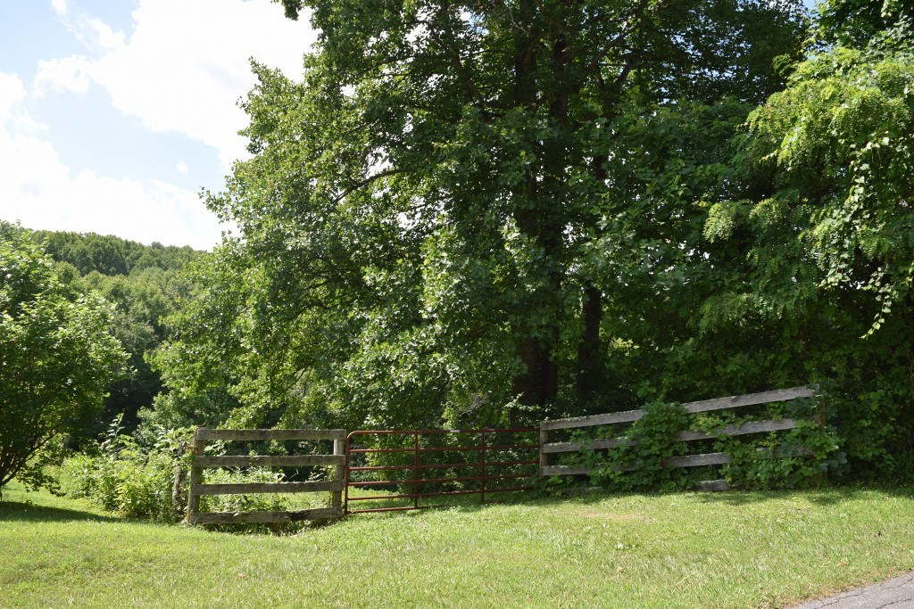 Land for Sale in Willis VA!