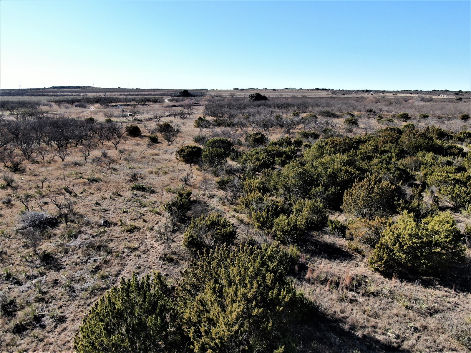 HUNT THIS PROPERTY IN COLEMAN COUNTY TEXAS