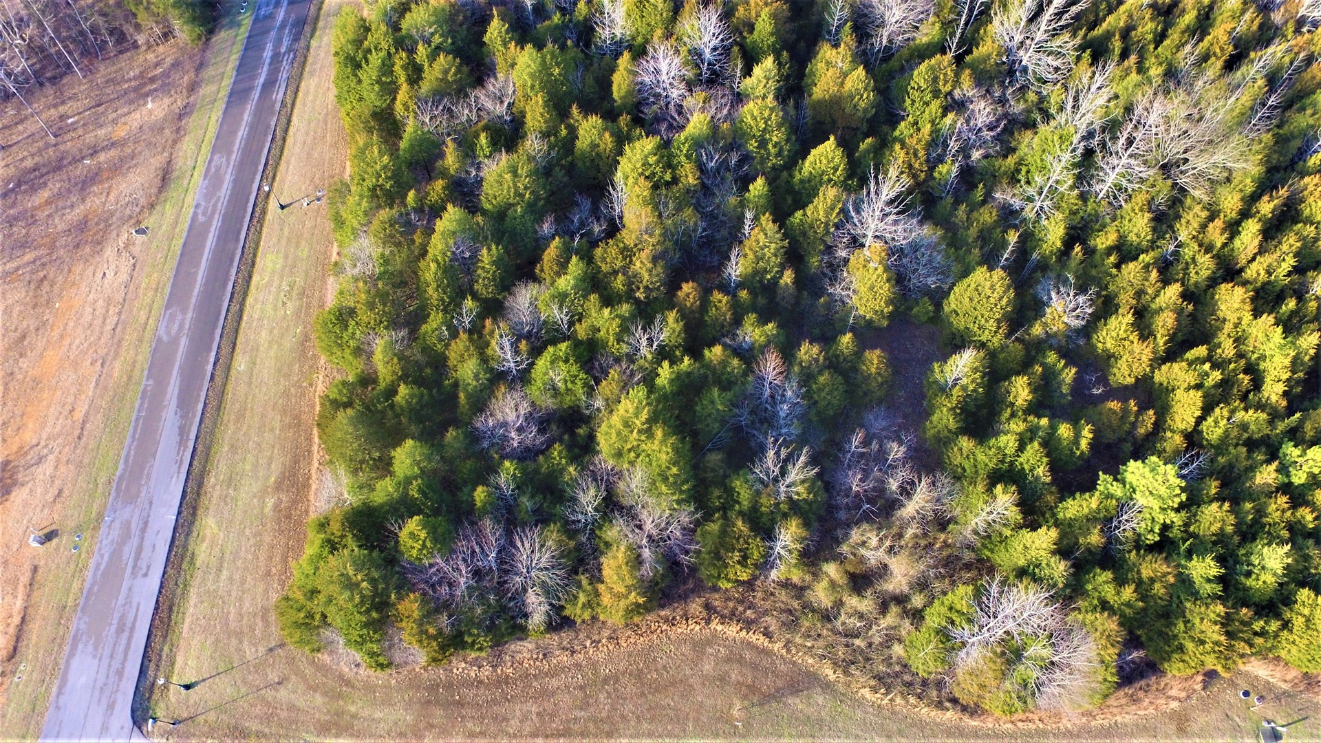 Lake Lot for sale in Barren County KY