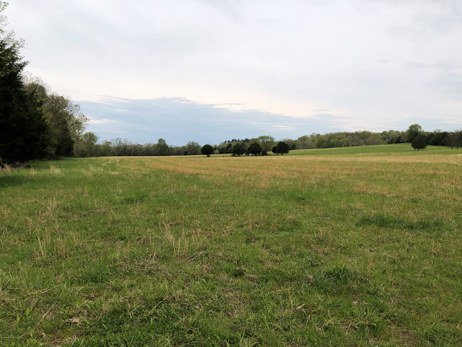 180 ACRE HUNTING PROPERTY/CATTLE FARM FOR SALE!