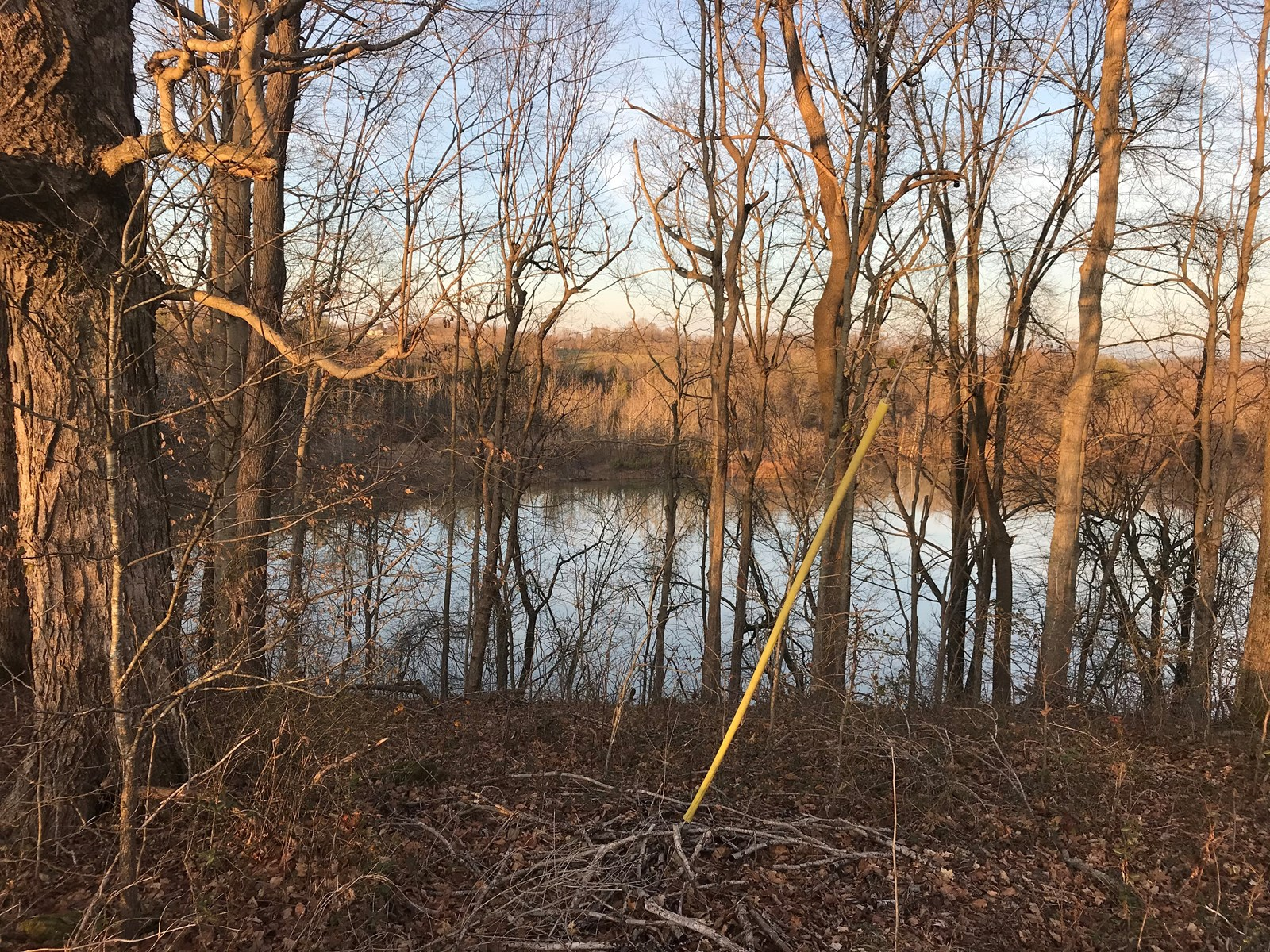 .677 Acre Lake Front on Barren River Lake, Paradise Lane