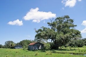 Hunting & Recreational Ranch For Sale in Glades County, FL