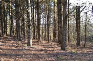 Great Building Lot in White Pine Acres Estates