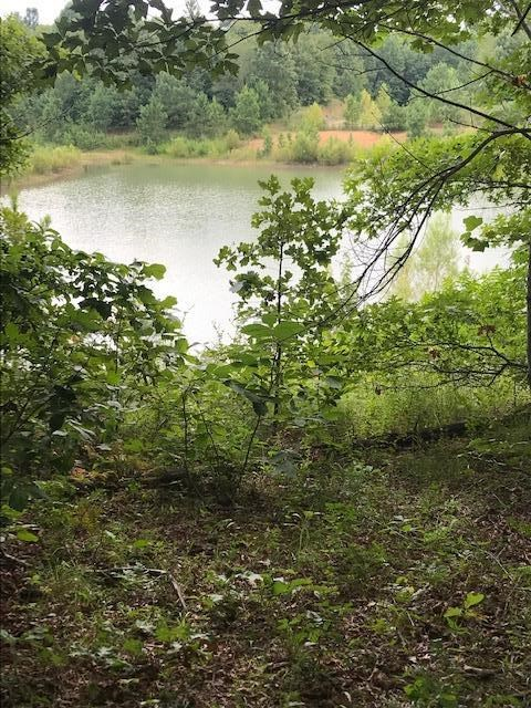 Land for Sale in Gated Community in Summertown, Tennessee