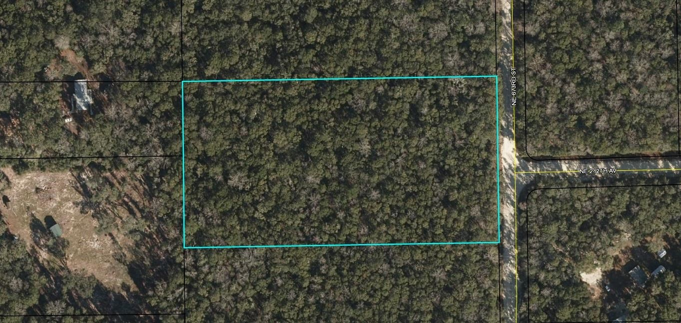 5 ACRES of Untouched Land in Old Town, Dixie County, FL!