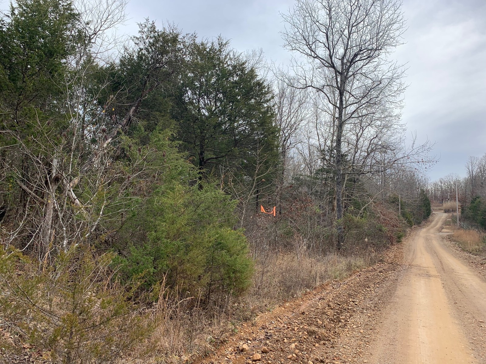 Acreage for Sale. Just Miles from Pocahontas Arkansas