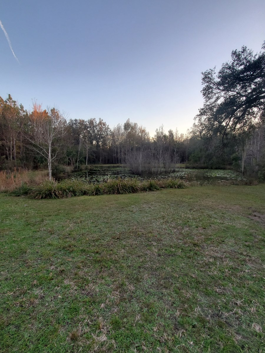 Prime hunting land with mobile home accommodations!