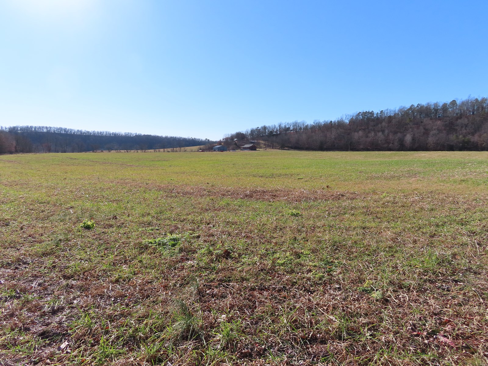 Creek Front Land for Sale
