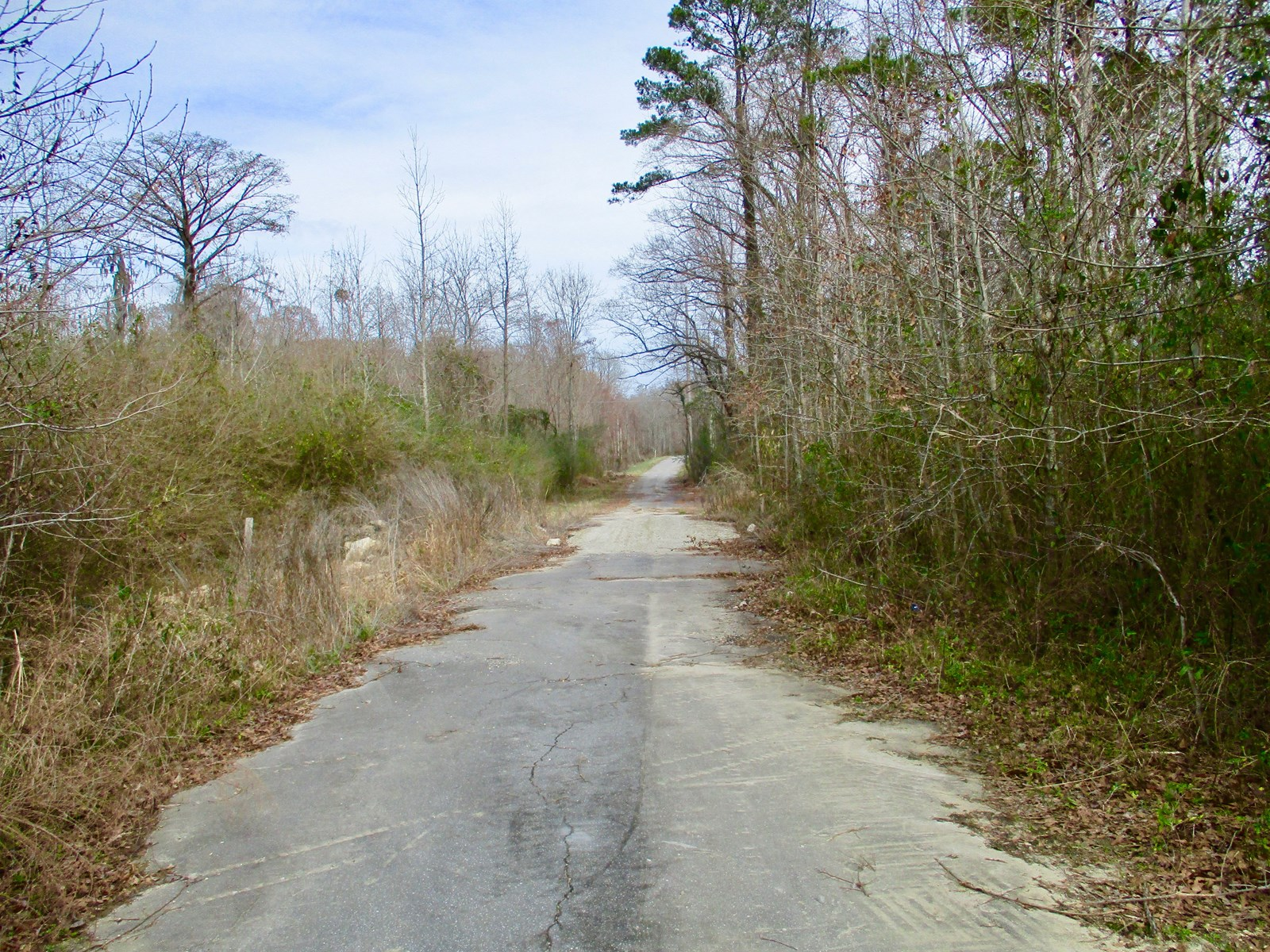 Land for Sale in Beaufort County, NC