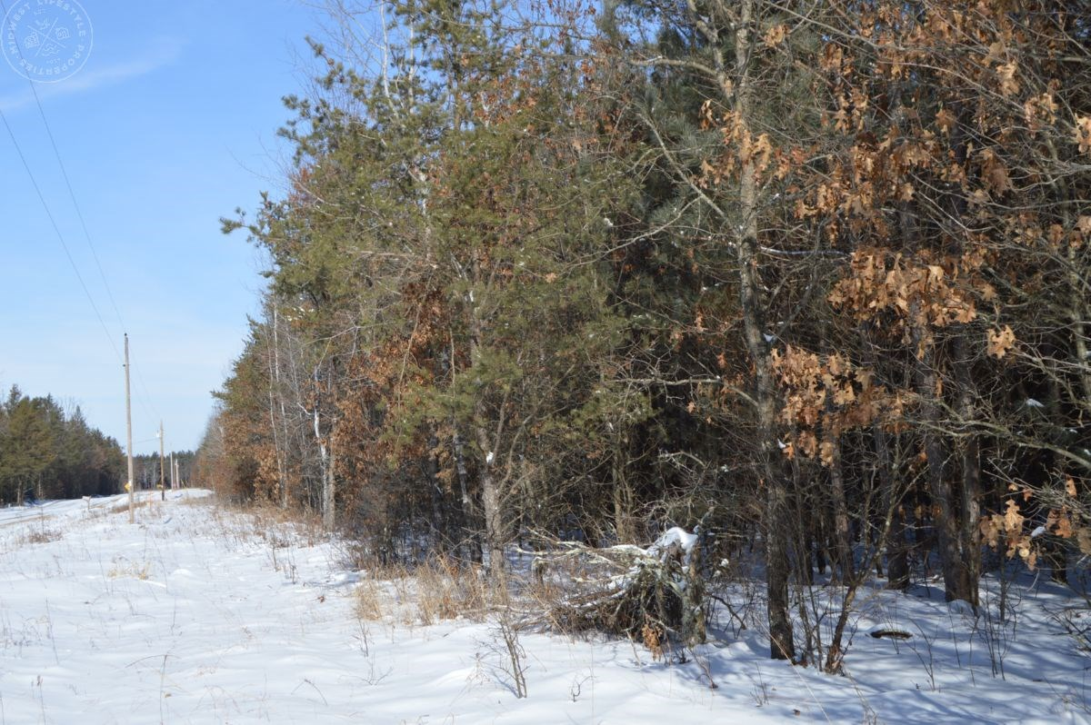 80 Acres of Timber for Sale in Juneau County WI