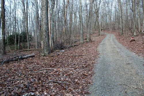 29.48 ACRES OF LAND FOR SALE IN FLOYD COUNTY, VA