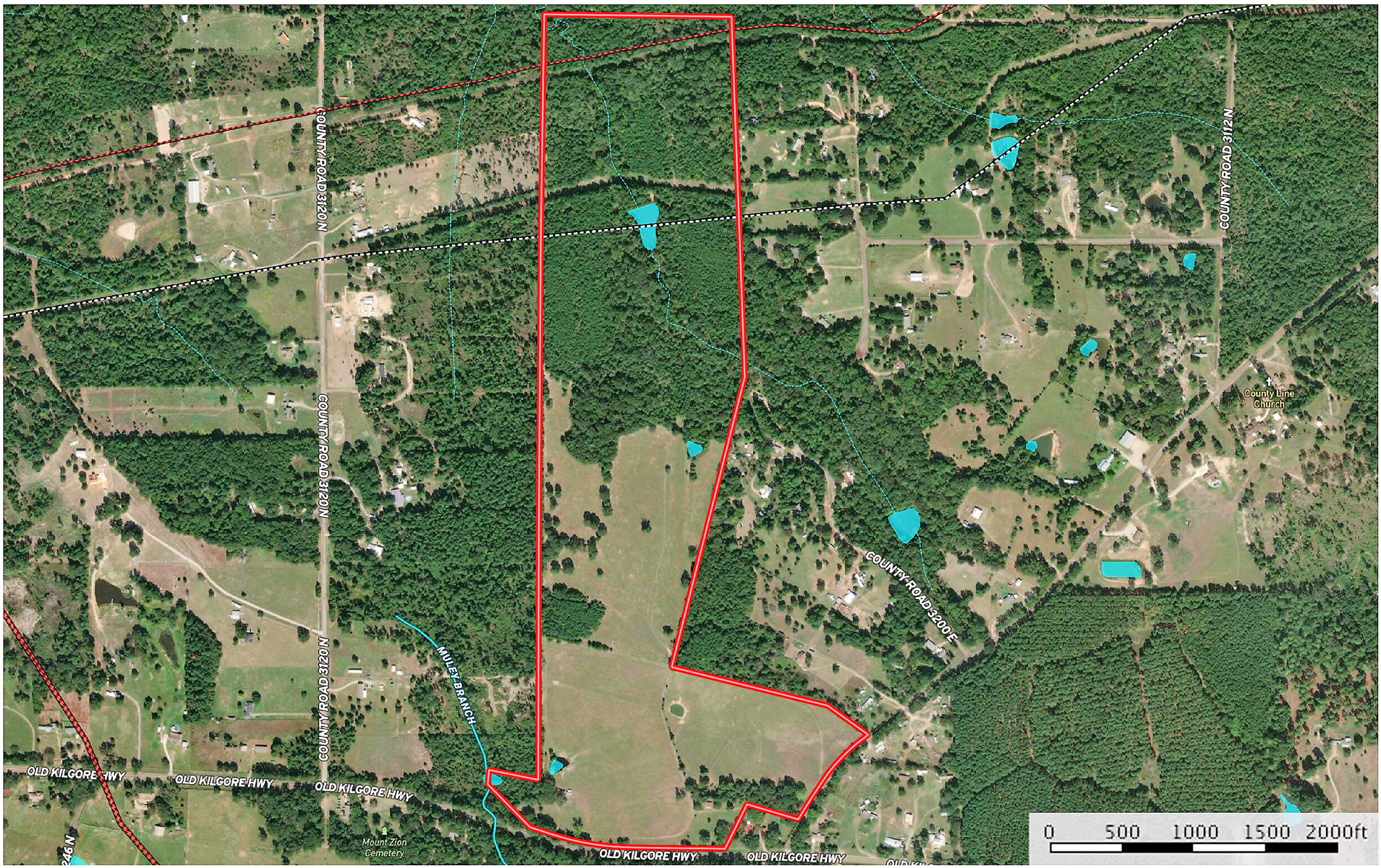 East Texas Land For Sale Timber Pasture Hunting Fishing