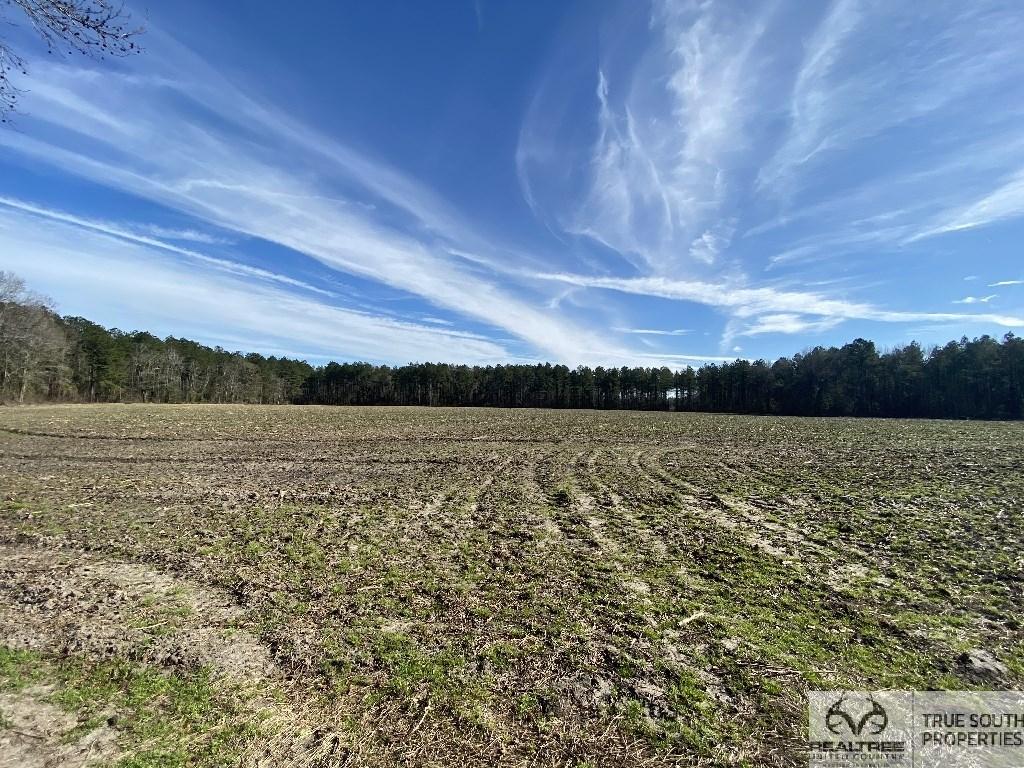 Brunson - Fairfax Timber & Farm Land