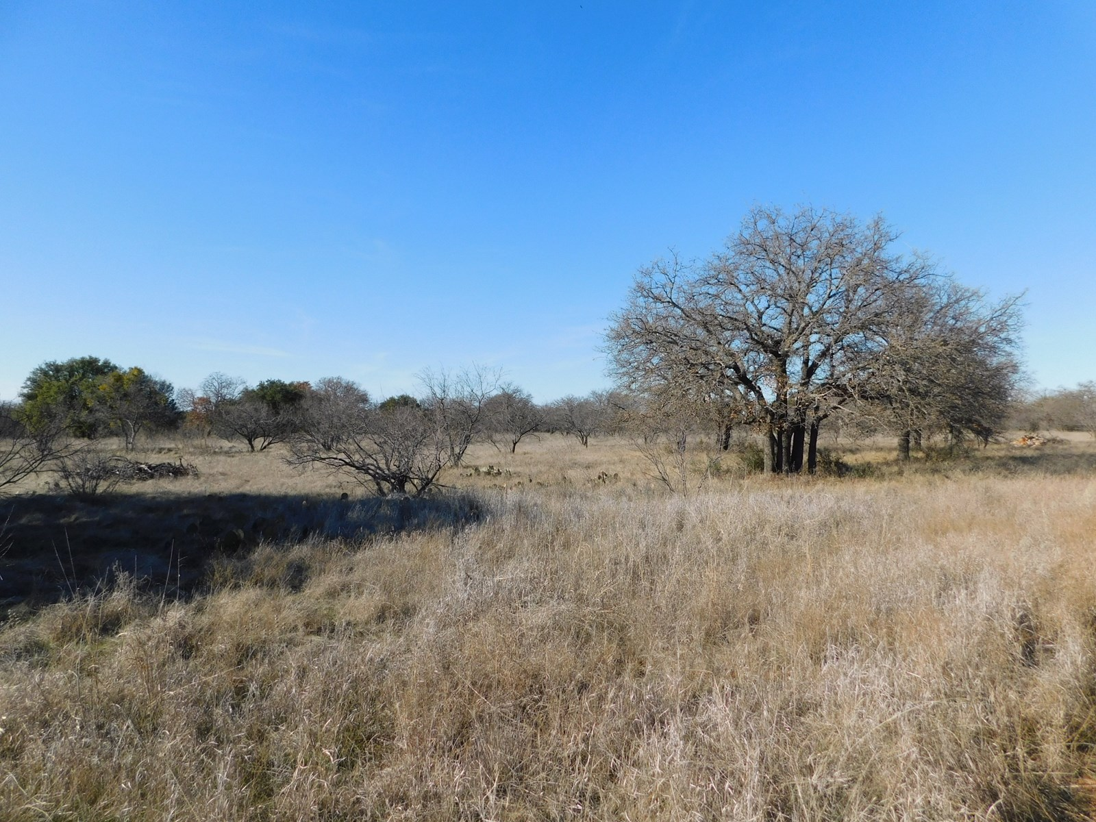 KINGS POINT COVE LOT AT LAKE BROWNWOOD TEXAS