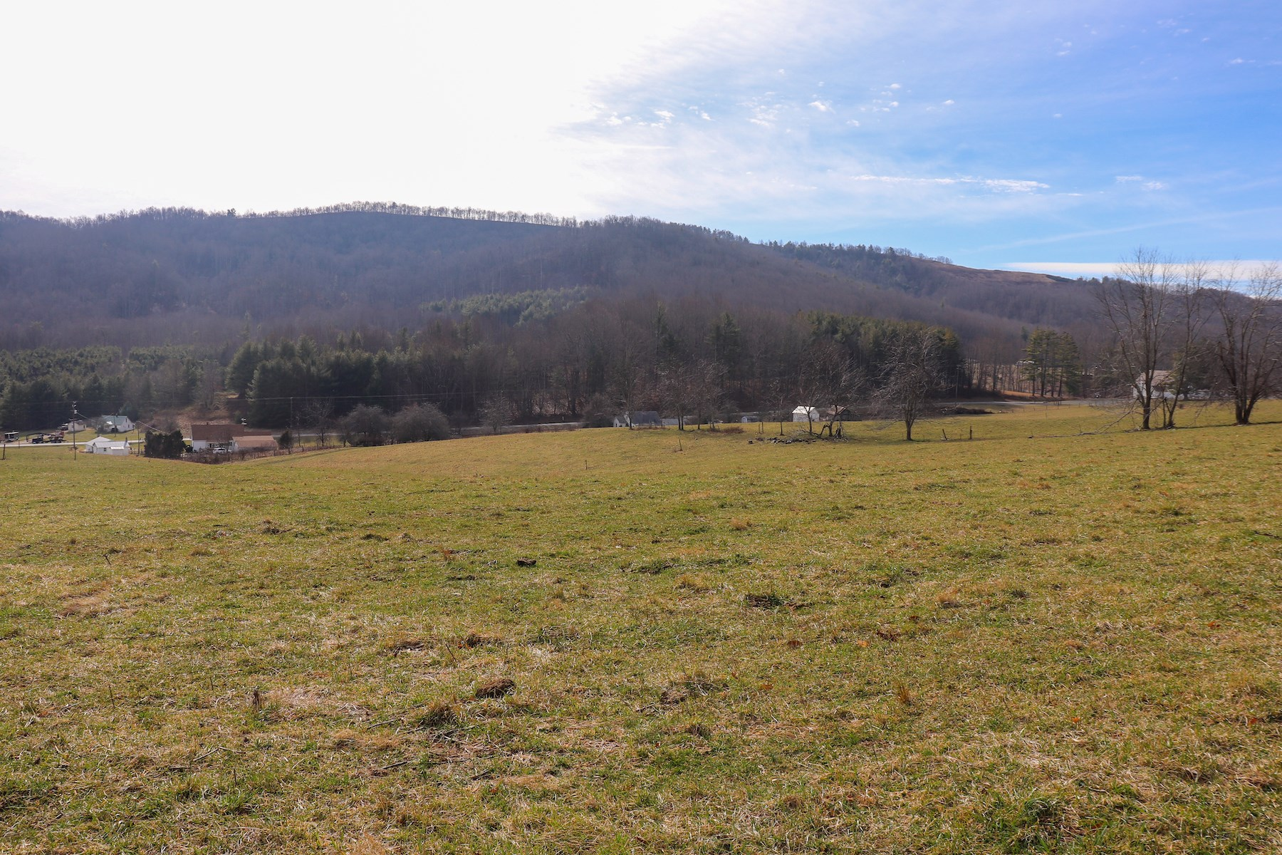 Farm Land for Sale at Auction in Floyd VA!