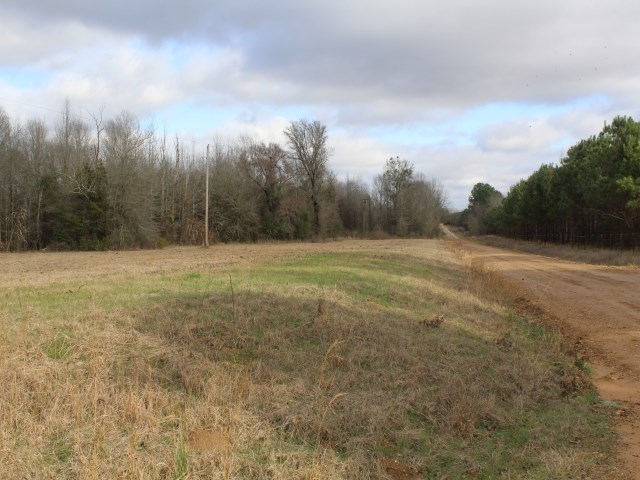 8+ ACRES IN BOWIE COUNTY TEXAS