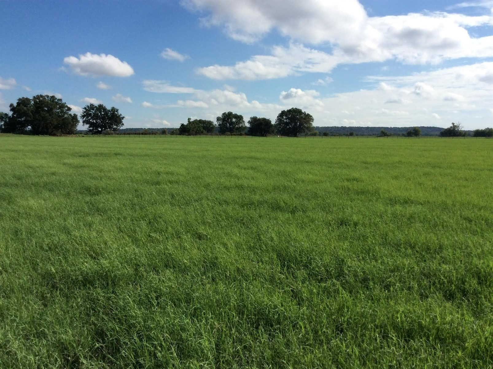 Land For Sale Lipan TX Parker County Brock ISD