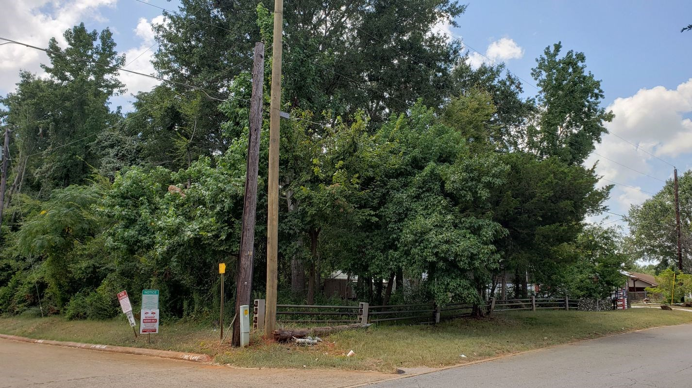 LEVEL VACANT LOTS FOR SALE IN PALESTINE TEXAS