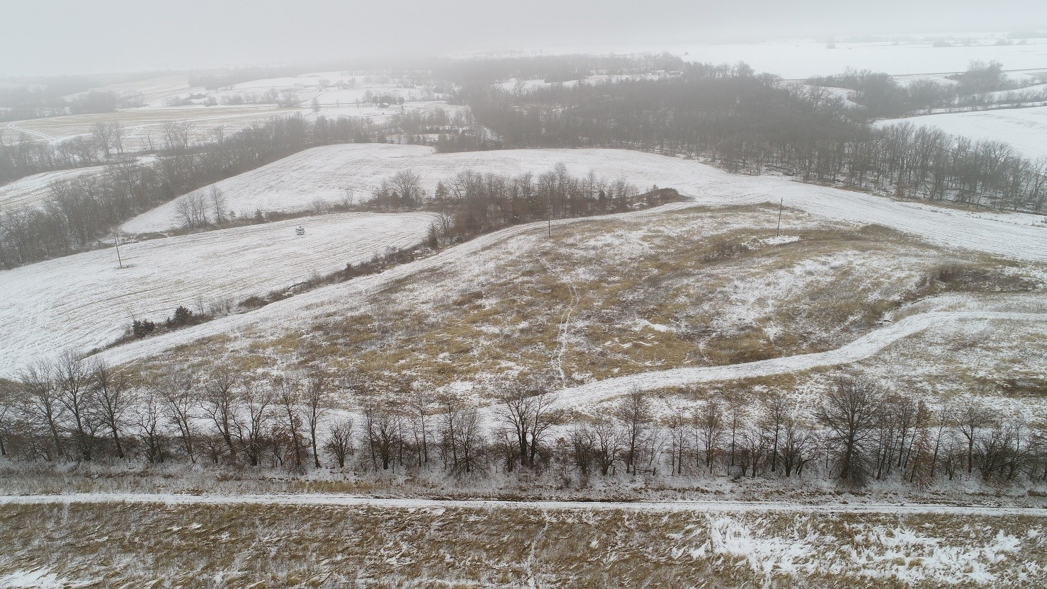 40+/- Acre Hunting with Income off Hwy 156 Macon Co