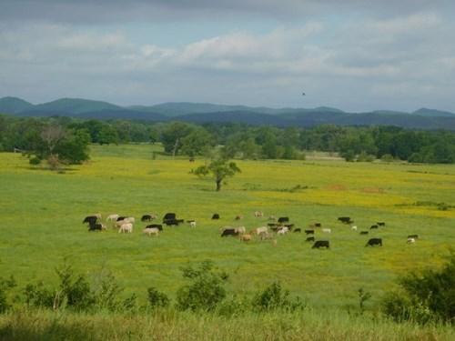 Oklahoma Mountain Valley Ranch