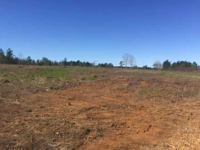 35 Acres Franklin County MS near Homochitto National Forest