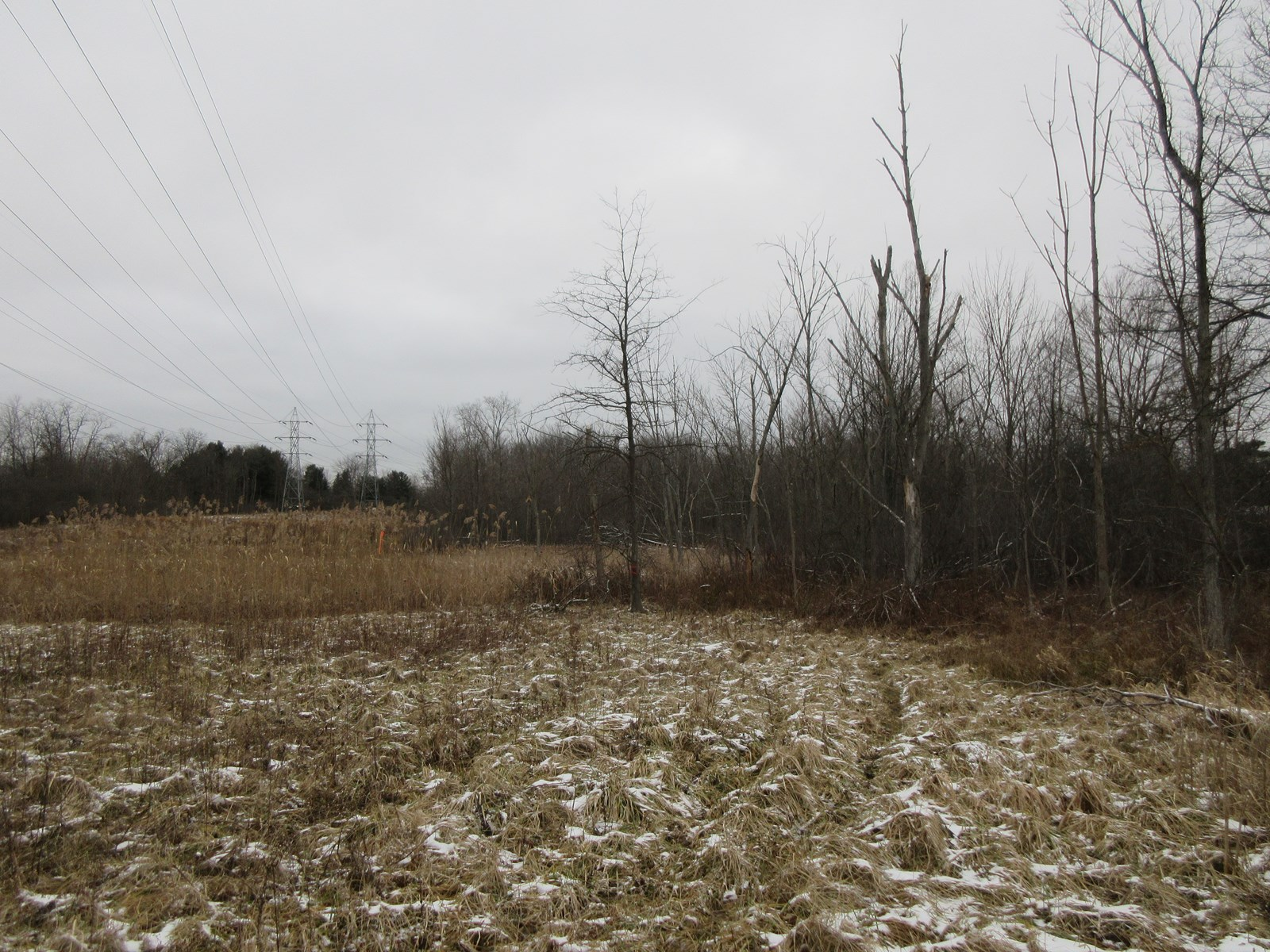 Cuyahoga County Land Auction