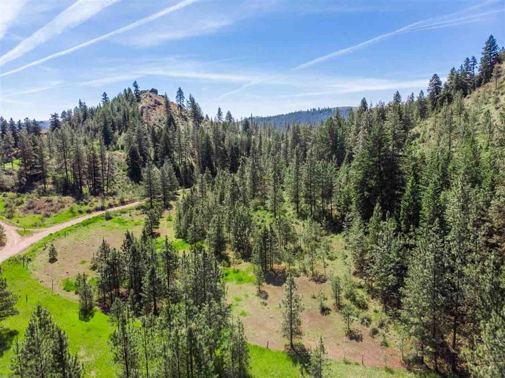 20 Acres in Davenport WA for sale & Ready to Build your home