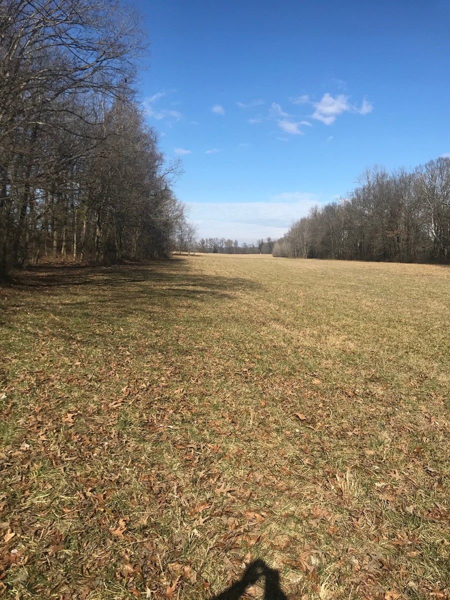 Recreational,Farm Land in S.E. MO. Joins M.D.C. Land