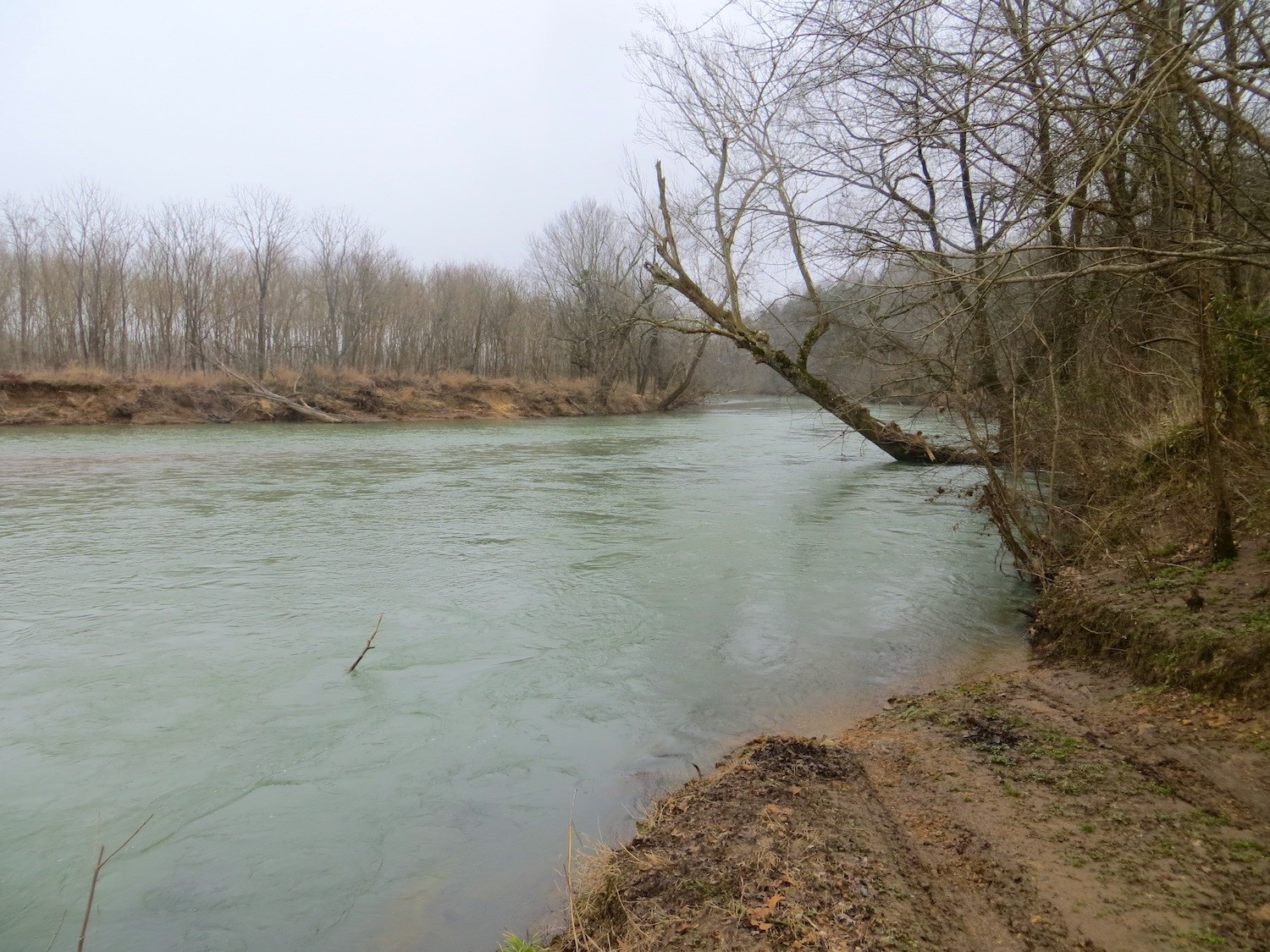 Acreage for Sale on 11-Point River