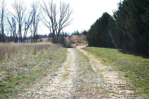 6 ACRES OF LAND FOR SALE IN PATRICK COUNTY, VA