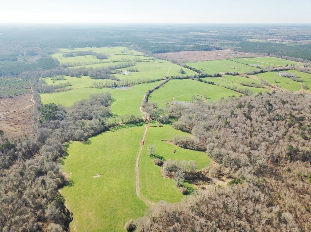 825 Acre Large Pastureland, Lake for Sale Amite County, MS