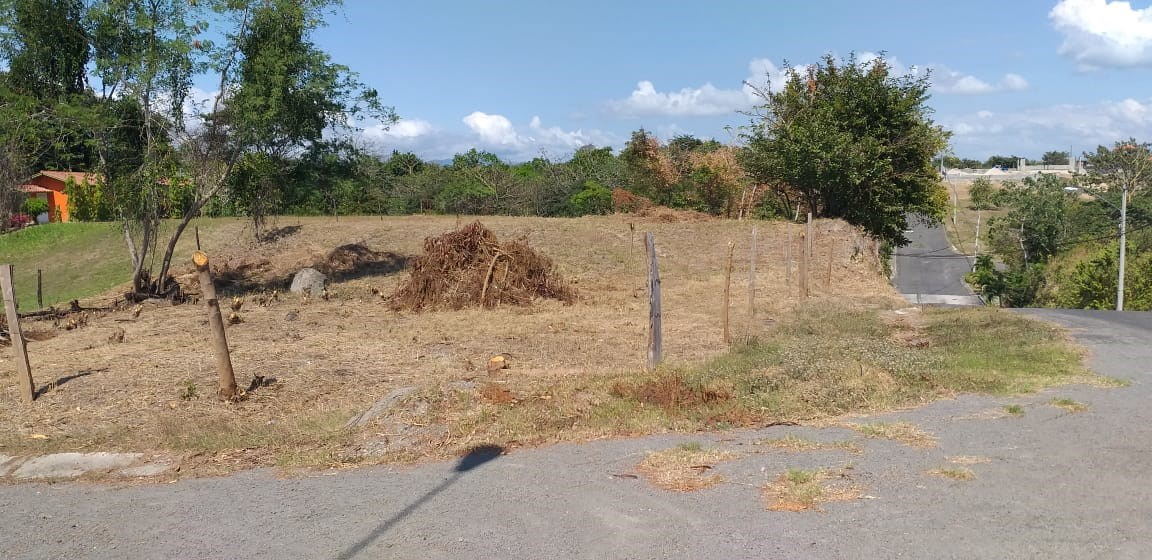 Country lot for sale in Panama