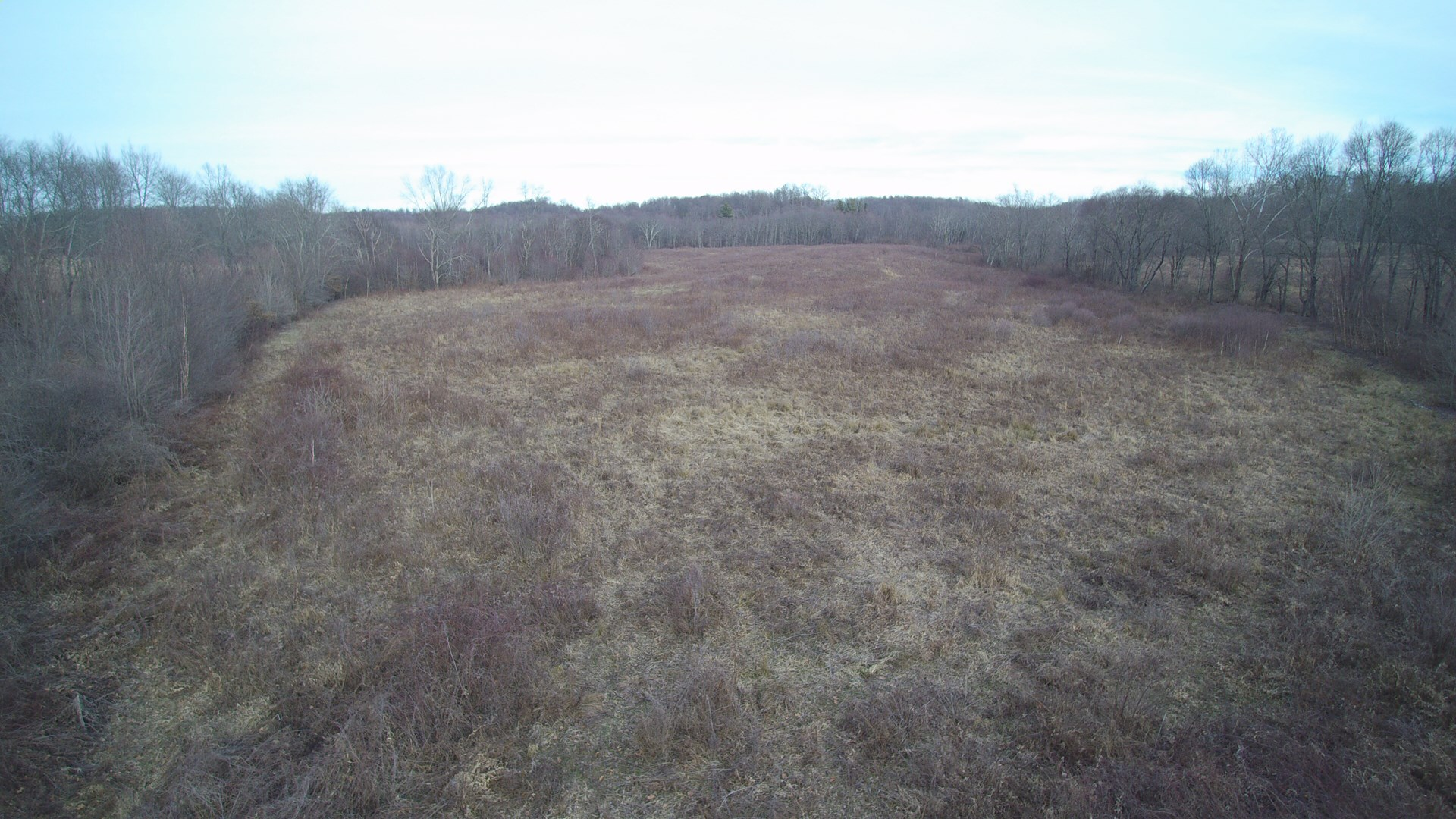 Vinton County - Woods-Pasture Land - Hunting - Moraine, OH