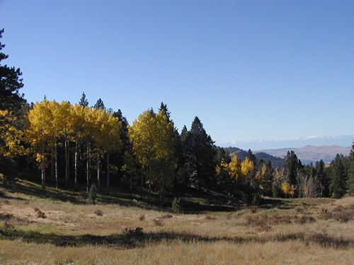 240 ACRE COLORADO RANCH BORDERS BLM WITH SPRINGS & PONDS