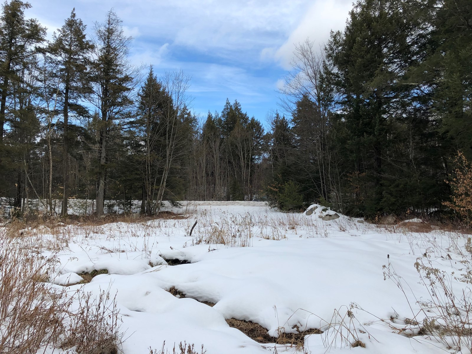 Timber Investment Property For Sale in Maine