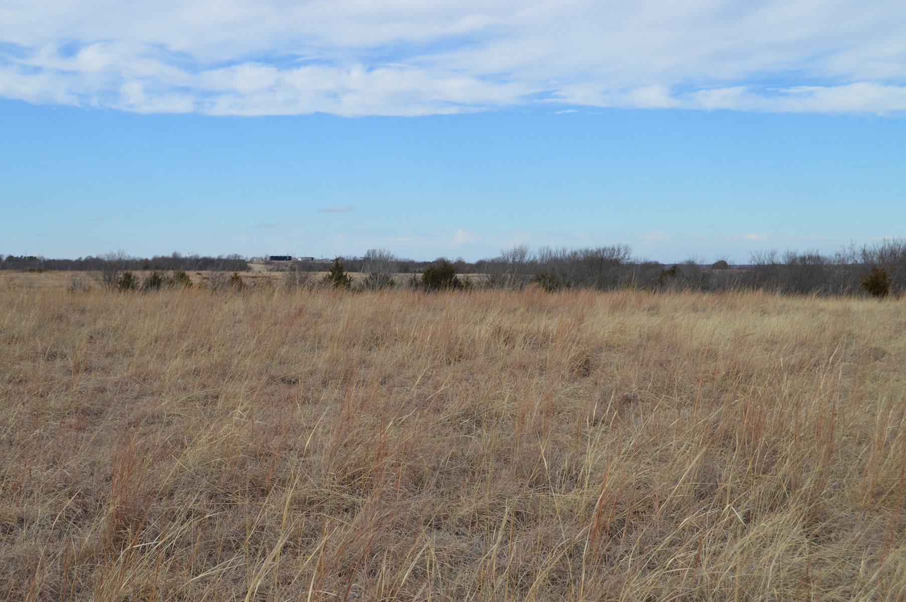 McClain County Pasture/Recreational Land Auction