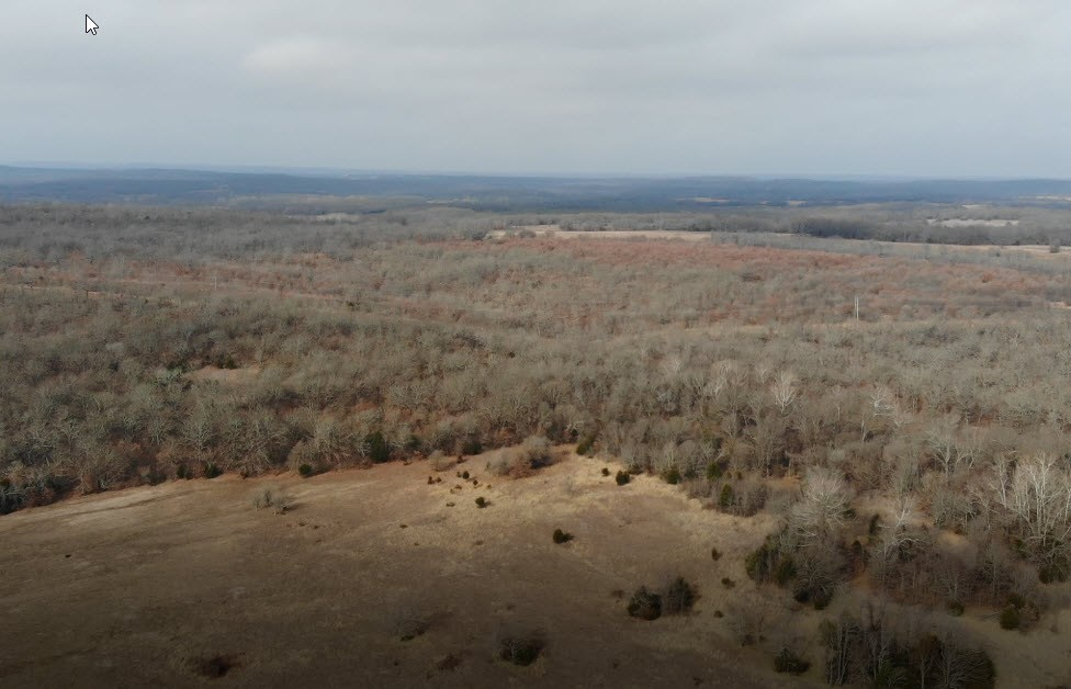 160 Acres Hunting/Recreational Pontotoc County Land Auction