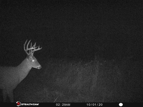 Northern MO Hunting Land, Recreational land, Whitetail deer