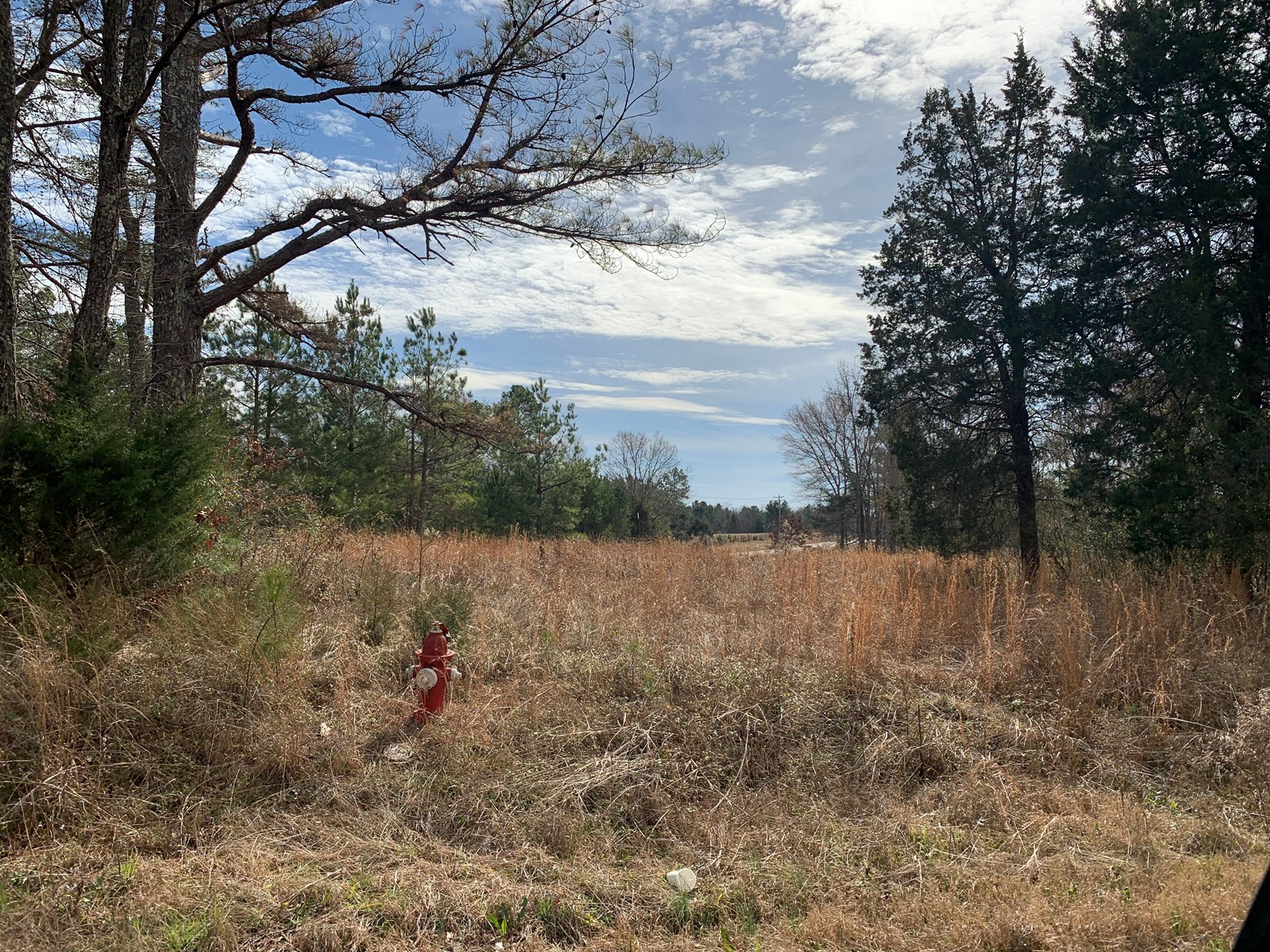 LAND FOR SALE IN TENNESSEE WITH FRONTAGE ON 2 ROADS