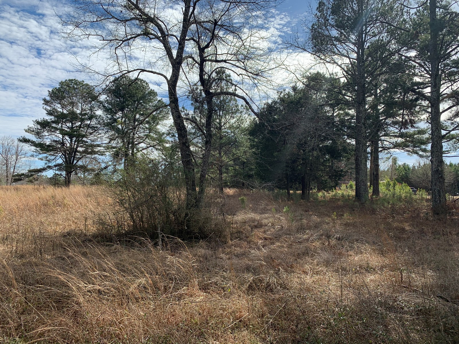 APPROX 3.8 ACRES FOR SALE IN TENNESSEE CLOSE TO TN RIVER