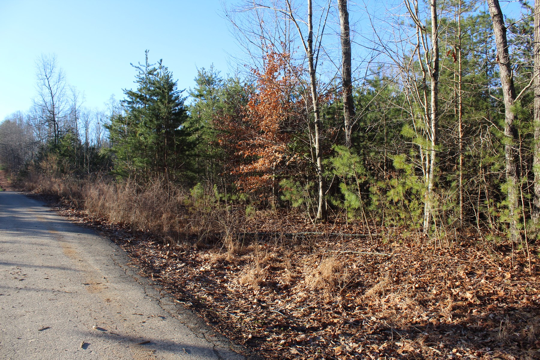Pilot Mountain Land For Sale