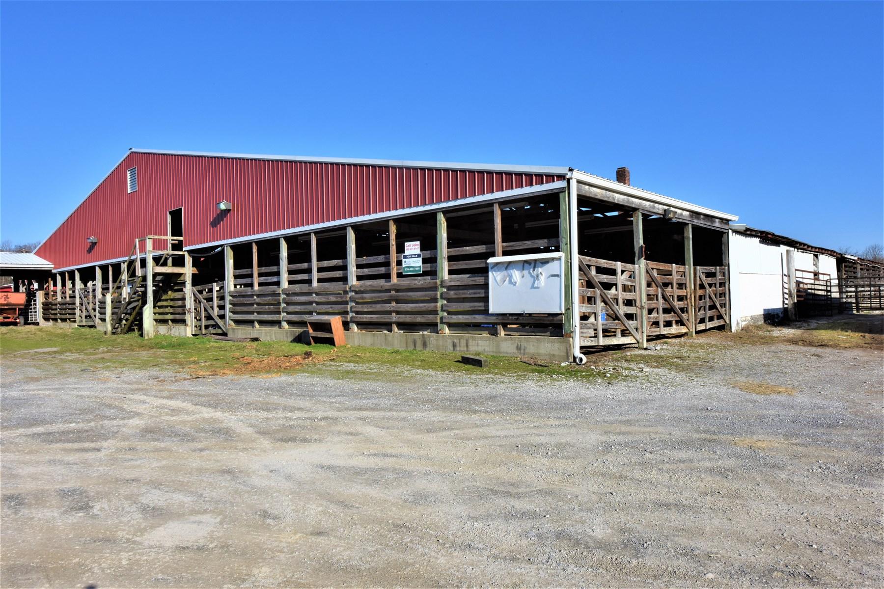 Stockyard, Business Opportunity, Good Location, Edmonton KY