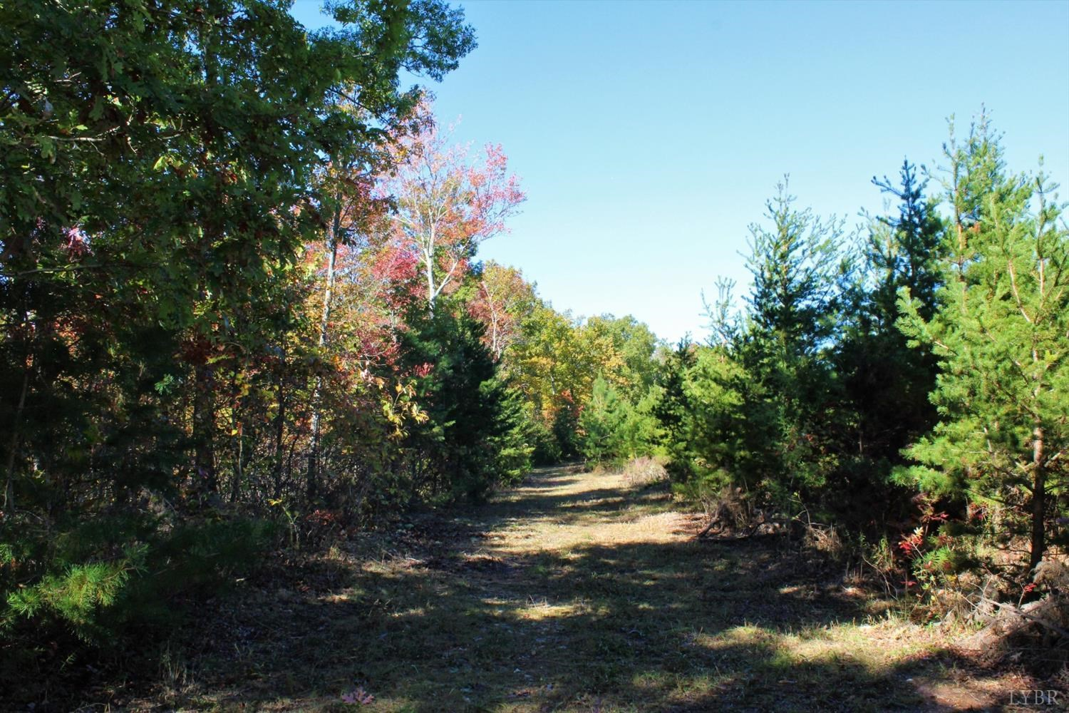 110 Acre: Hunter's Paradise in Lynch Station, VA