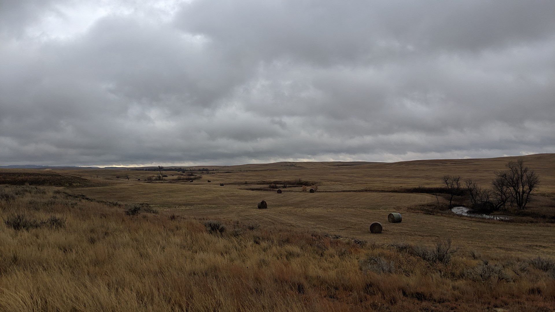 Hunting Mecca in Eastern Montana