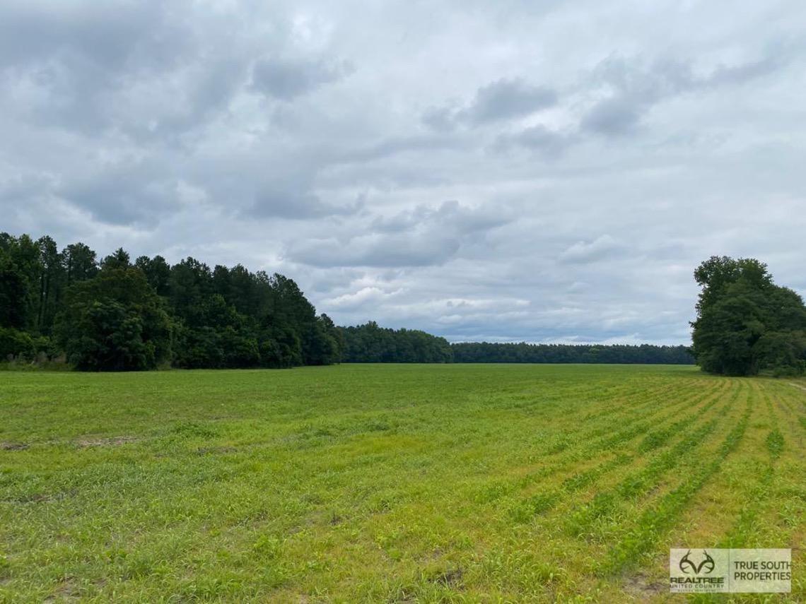 Brunson-Fairfax Croaker Swamp Farm Land