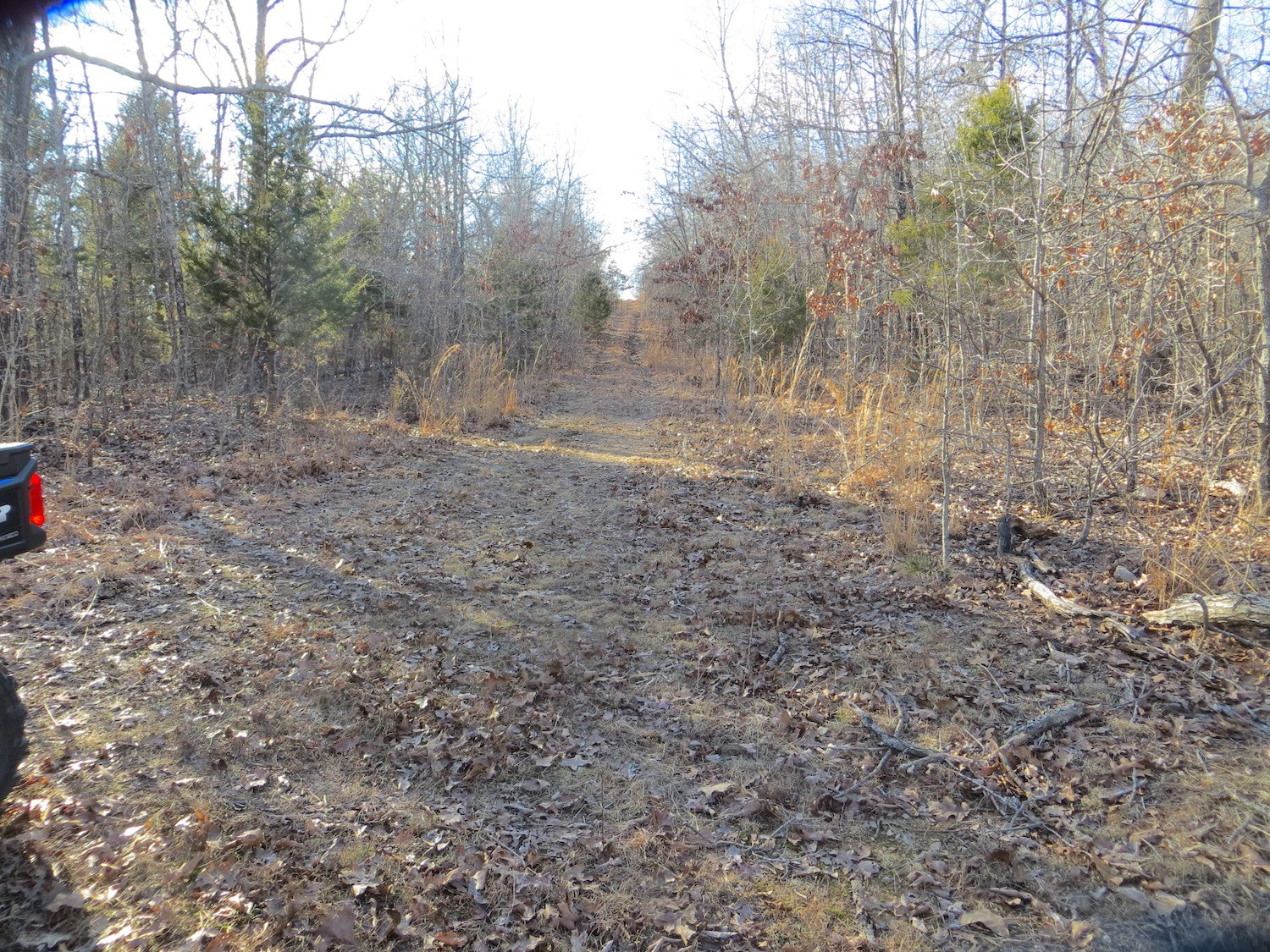 Recreational Land for Sale in Mammoth Spring, AR