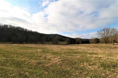 Farm/Hunting property 174.75 acres Monticello KY Wayne Co.